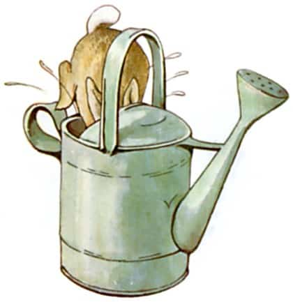 elongated droplets watering can Peter Rabbit