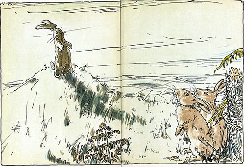 rabbit on the hill