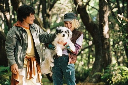 bridge to terabithia pets
