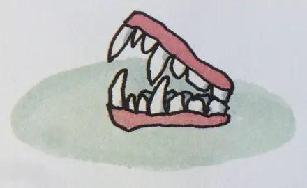 dr-de-soto-fang-dentures