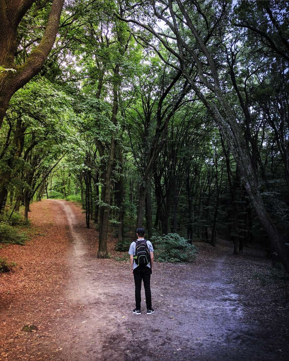 young man standing at crossroads in the woods