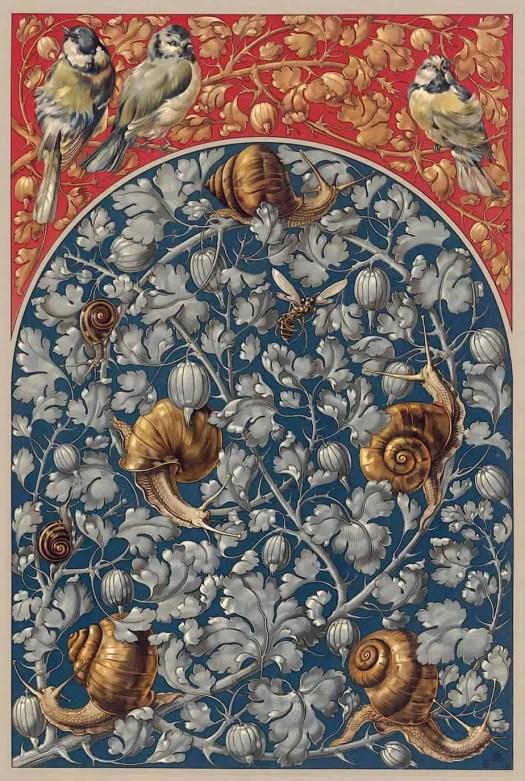 Anton Seder - The plant in art and commercial - Naturalistic part, Pl. 158-1887-via Heinrich Hein Universitat Dusseldorf