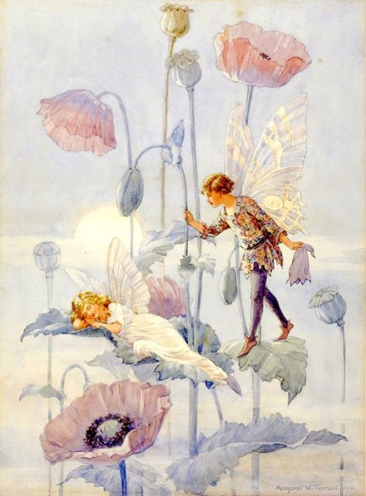 Margaret Tarrant (British illustrator and writer) 1888 - 1959 Poppies/ Flower Fairies, 1921-