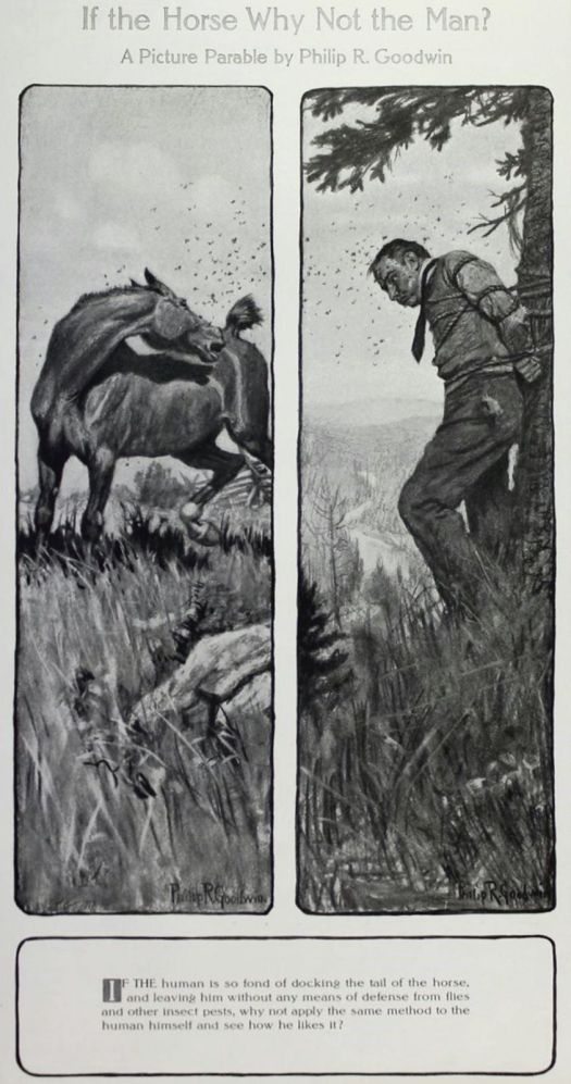 PHILIP GOODWIN, IF THE HORSE WHY NOT THE MAN, A PICTURE PARABLE, 1908