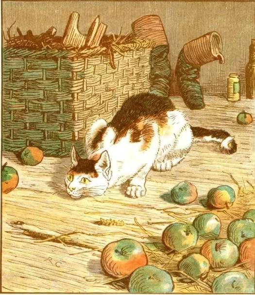 Randolph Caldecott cat in barn with apples