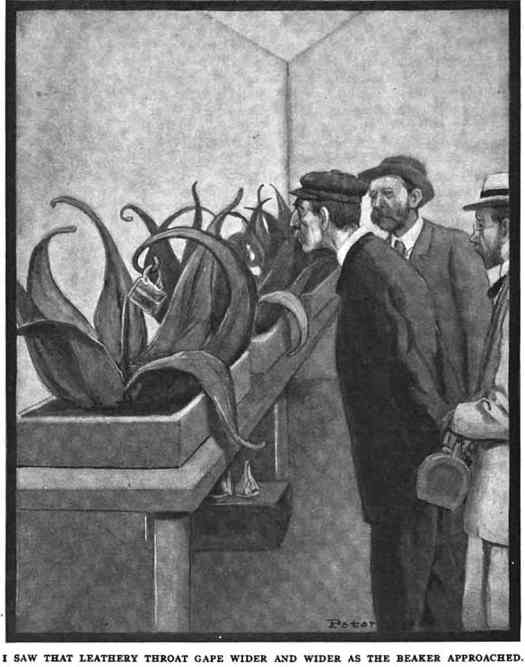I saw that leathery throat gape wider and wider as the beaker approached From Everybody's Magazine, 1909