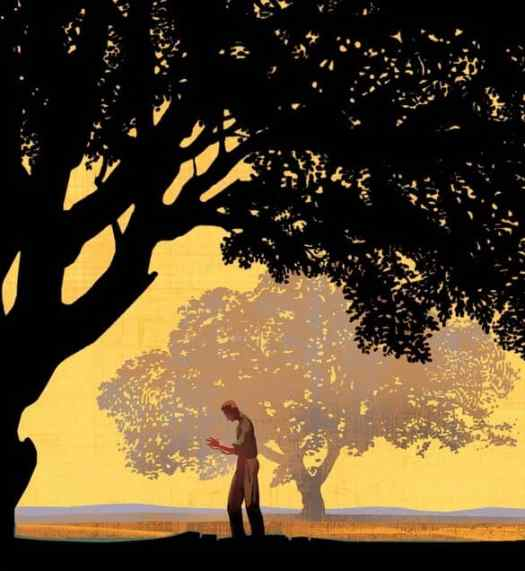 Cover illustration for the book,  East of Eden
