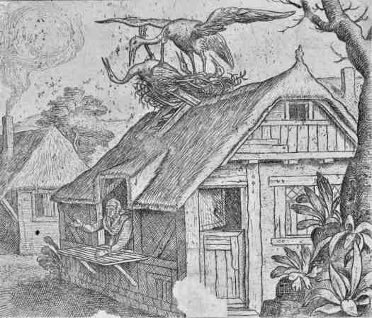 Fable about storks and their religion, Marcus Gheeraerts (I) (attributed to), after Marcus Gheeraerts (I), 1578