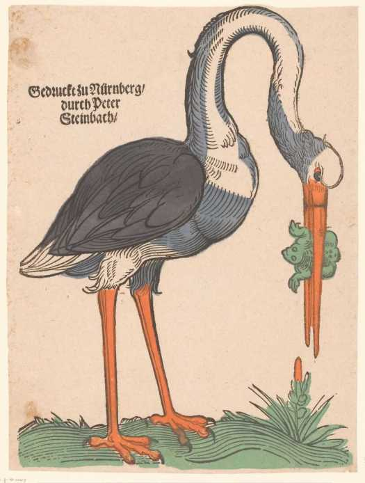Stork with a frog, anonymous, 1586 - 1636
