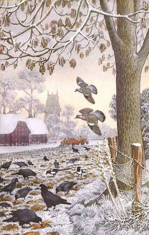 Charles Tunnicliffe what to Look for in Winter' 1959 Ladybird books barn farm spider