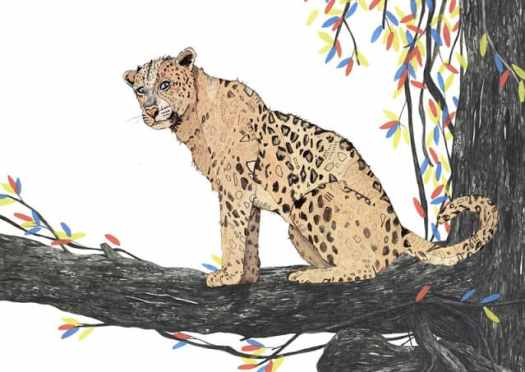Sandra Dieckmann leopard