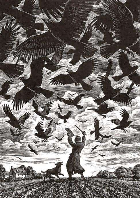'The dance', woodcut print by Andrew Davidson, British artist and illustrator