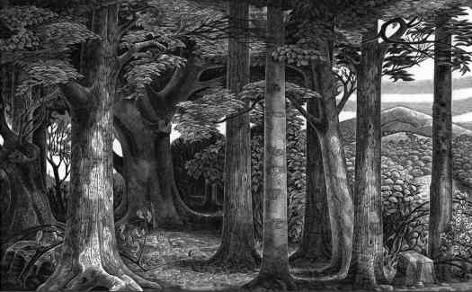 Edge of the Woods by Monica Poole (1921-2003), wood engraving