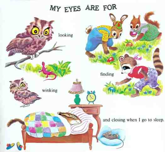 My Head-to-Toe Book by Jean Tymns, illustrated by Tibor Gergely (1974) eyes