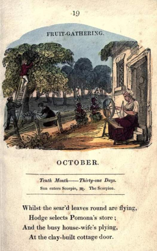 The Juvenile almanack, or, Series of monthly emblems c1822-1824 spinning