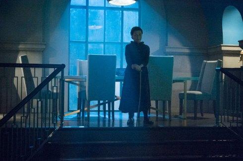 Iron Fist - Wai Ching Ho as Madame Gao
