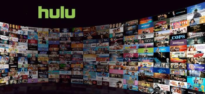 Time Warner Hulu
