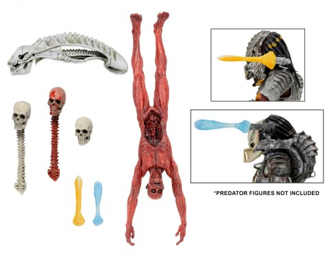 predator-accessoryset