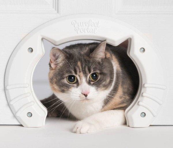 Purrfect Portal Cat Door - Slash Pets