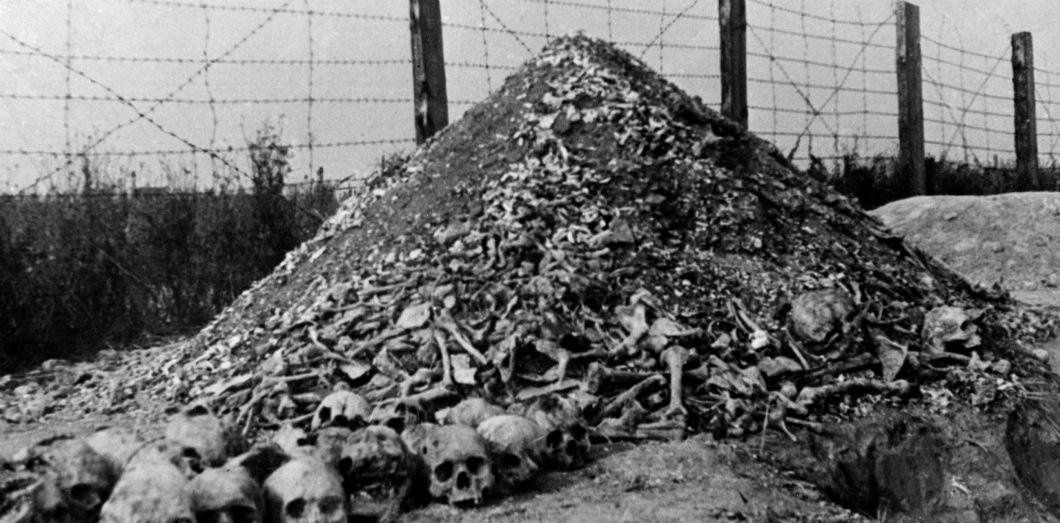 """Résultat de recherche d'images pour """"auschwitz liberation"""""""