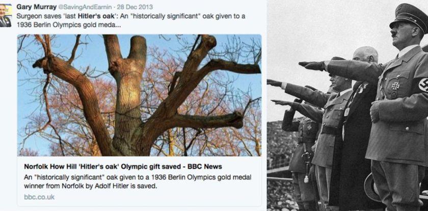 Jeux olympiques: à la recherche des chênes d'Hitler   Slate.fr
