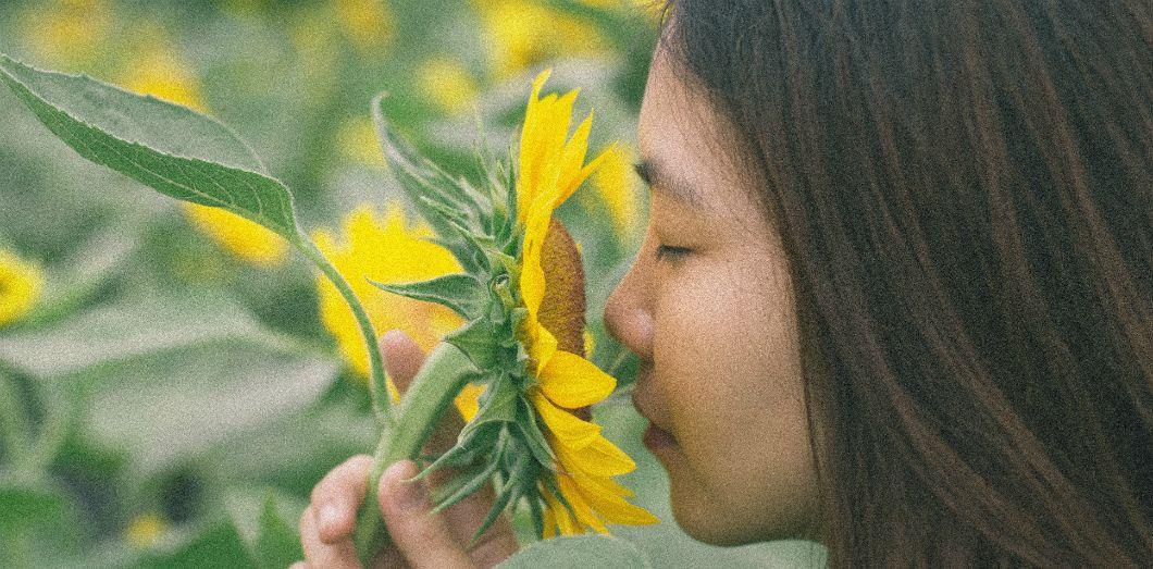 Aucune culture n'est vraiment bonne pour décrire les odeurs | Me Shroud via Unsplash CC License by