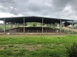 Covered Arena at Infinity Equine Services