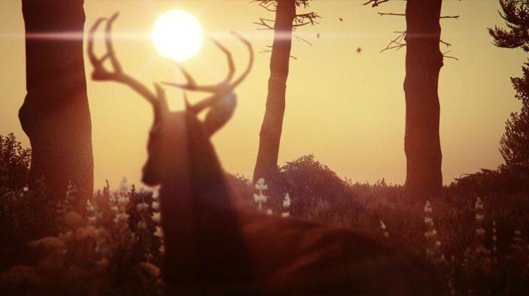 Hirsch GTA Screenshot schönste Bilder lustige Fotos aus Games