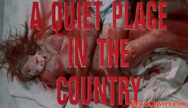 A Quiet Place in the Country (1968) watch online