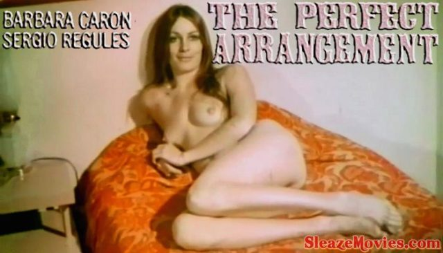 The Perfect Arrangement (1971) watch uncut