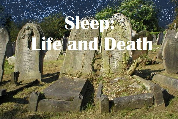 Sleep: Life and Death