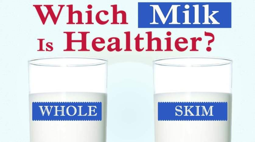 Whole or skim which Type of milk is best