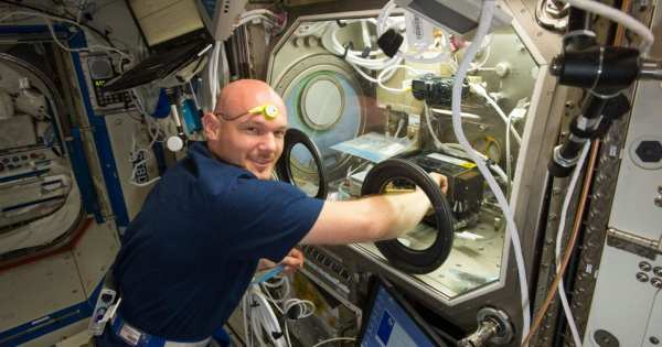 Studying Circadian Rhythm on the International Space ...