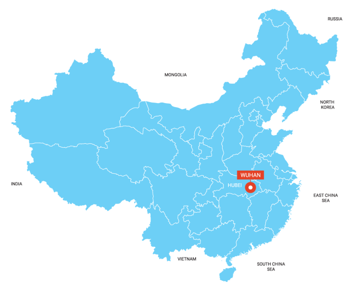 Image result for wuhan china map
