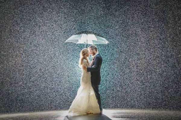 magical wedding photo