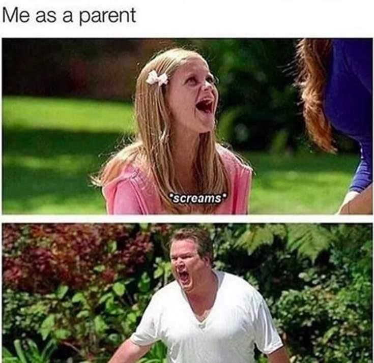38 Hilarious Memes Thatll Make You Lose It 22
