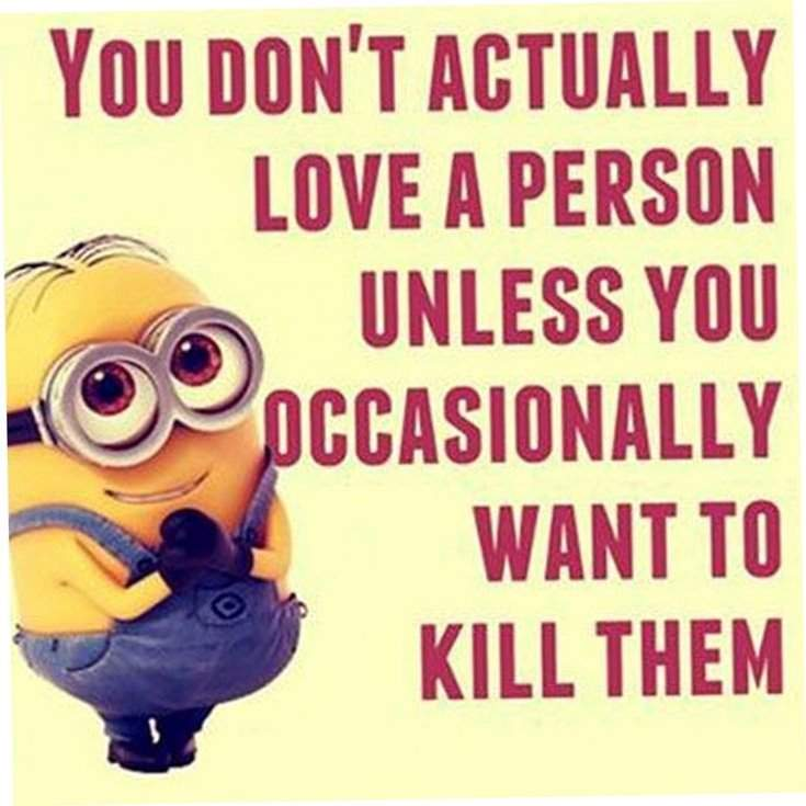 40 Funny despicable me Minions Quotes 14