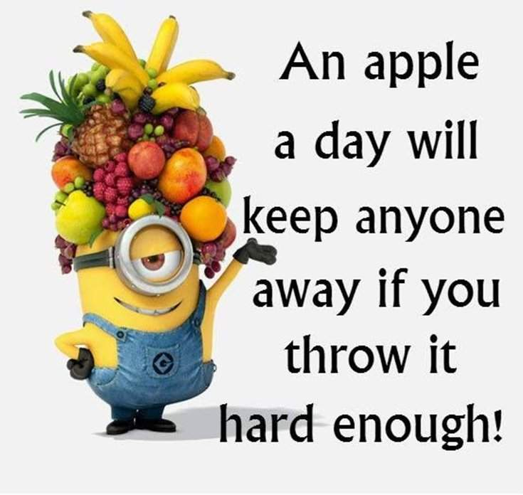 40 Funny despicable me Minions Quotes 18