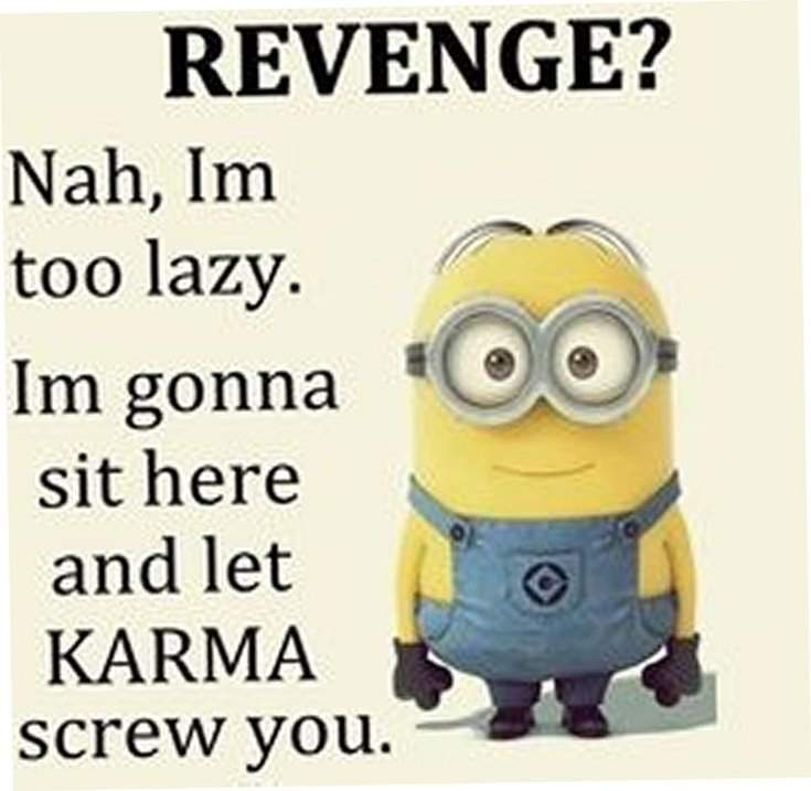 40 Funny despicable me Minions Quotes 27