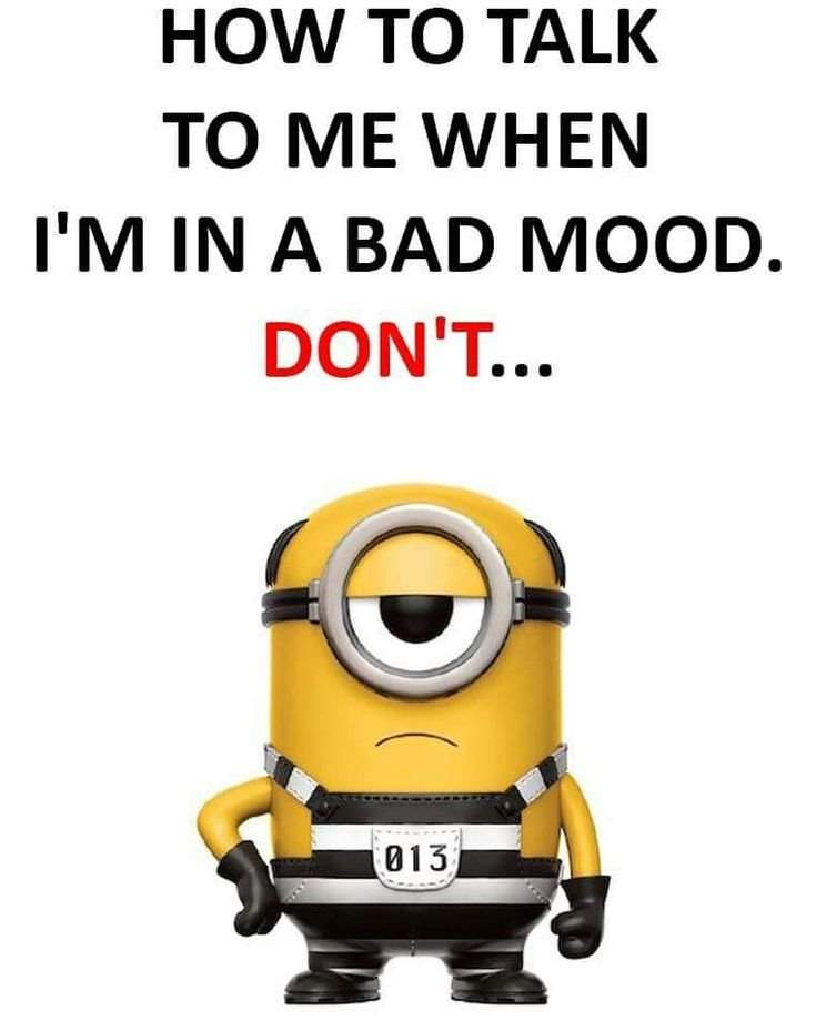 40 Funny despicable me Minions Quotes 32