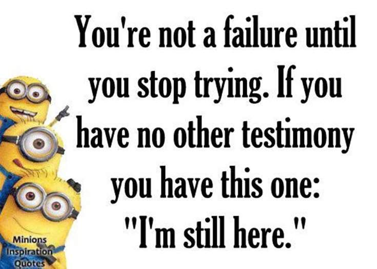 40 Funny despicable me Minions Quotes 36