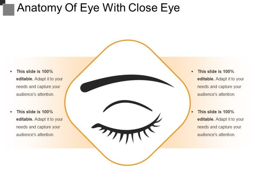 Anatomy Of Eye With Close Eye | PowerPoint Templates ...