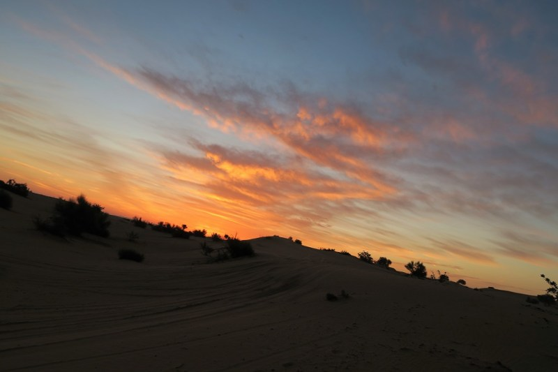 Early morning safari with Dubai Desert Safari Tours