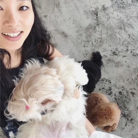 Week 18: Kota Kinabalu - puppy cafe!