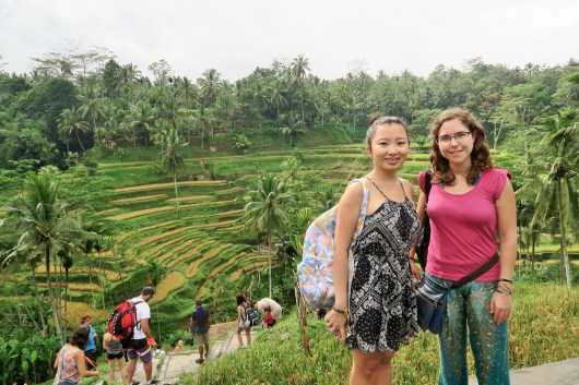 Week 6: Ubud - rice terrace visit with Laia