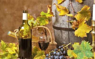 Welke wijn drink je bij je favoriete gerecht?
