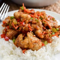 Low Syn Chinese Salt and Pepper Chicken