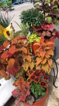 concord-fall-custom-planter