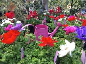 Concord garden