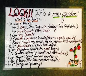 Mini planter instructions